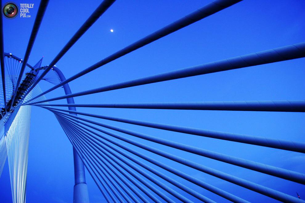 17117 30 бодрящих фотографий в оттенках синего