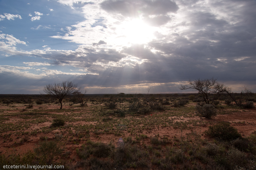 1873 Большое путешествие: 7000 километров по Австралии (Часть 4)