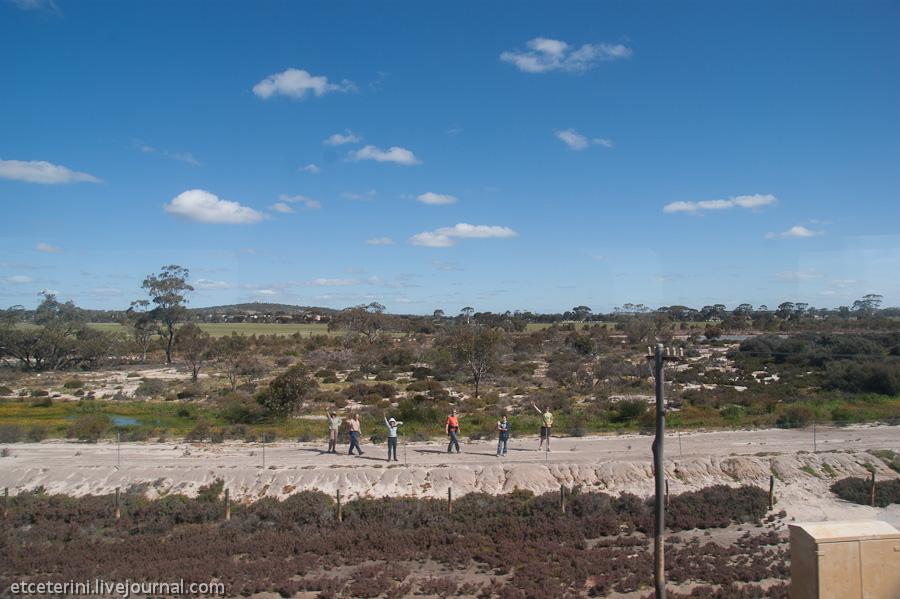 Путешествия доктора Etceterini. 7000 километров по Австралии. Часть 2. Индиан-Пасифик