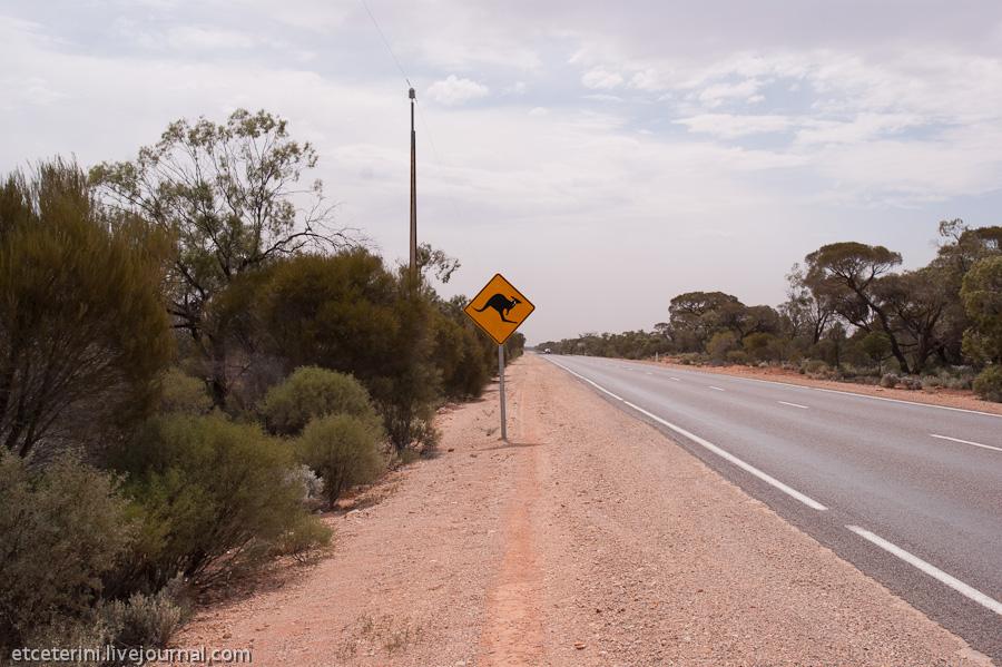 999 Большое путешествие: 7000 километров по Австралии (Часть 4)