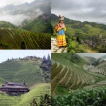 Рисовые террасы «Драконий хребет»