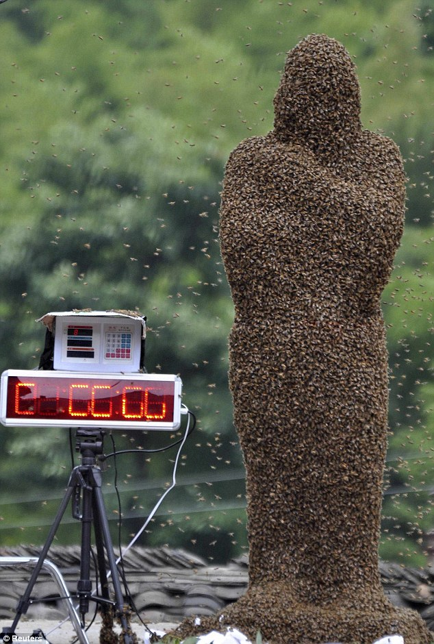 bee02 Китайца облепили 26 кило пчел