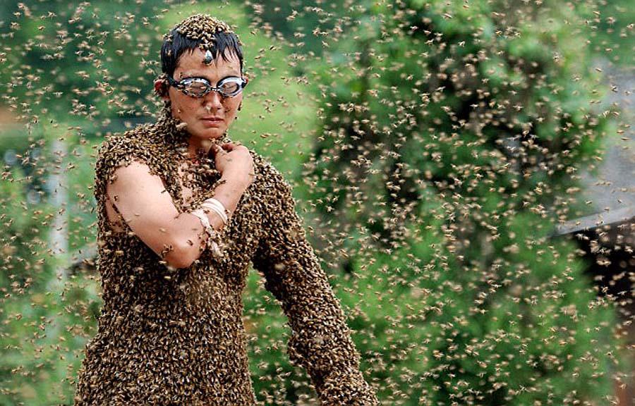 bee04 Китайца облепили 26 кило пчел