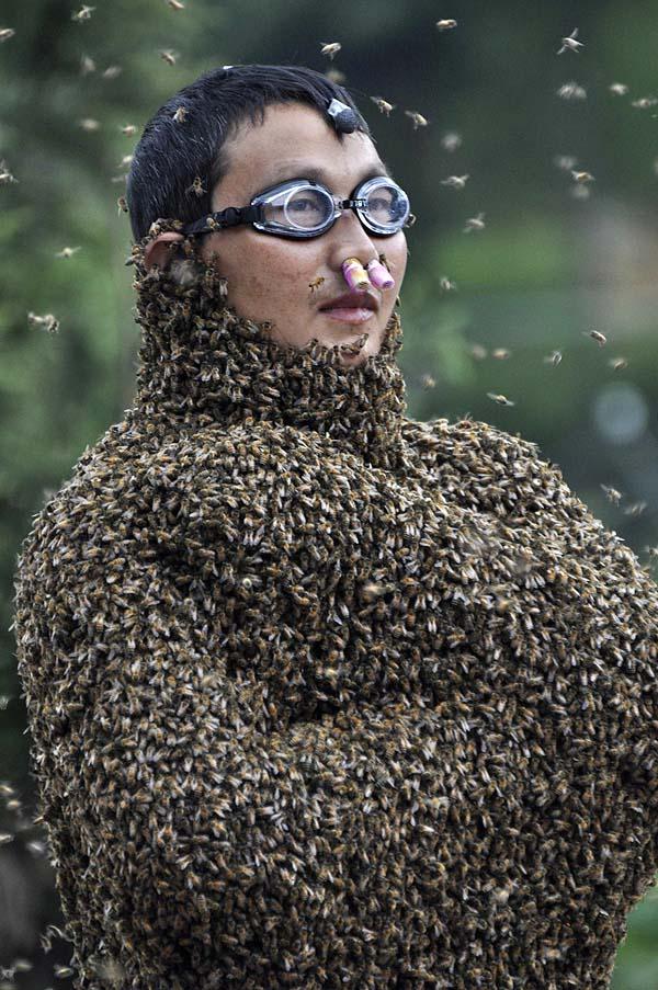 bee05 Китайца облепили 26 кило пчел