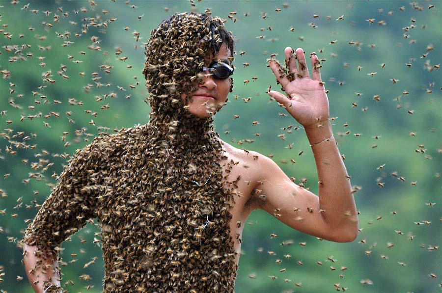 bee07 Китайца облепили 26 кило пчел