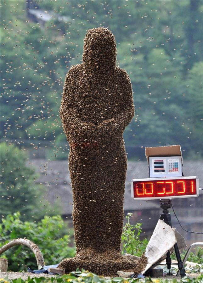 bee08 Китайца облепили 26 кило пчел