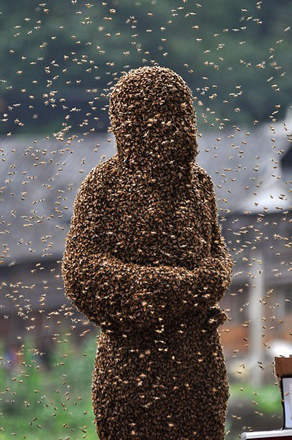 bee09 Китайца облепили 26 кило пчел