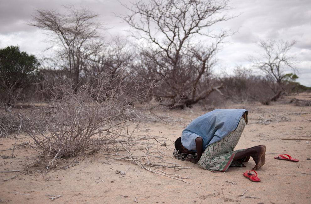hungymamafrika27 Голод в Восточной Африке