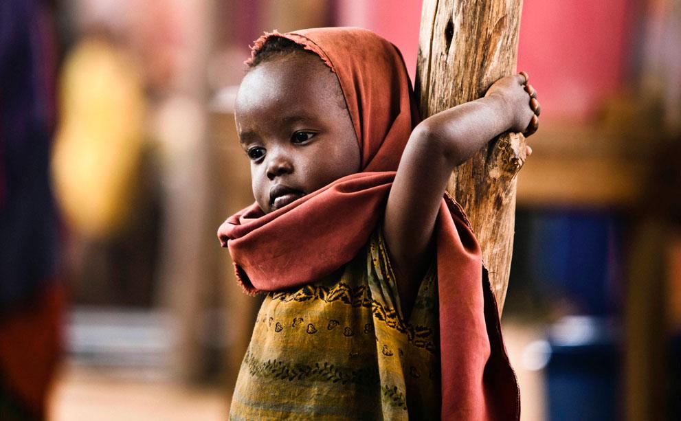 Порна африка в маштаби