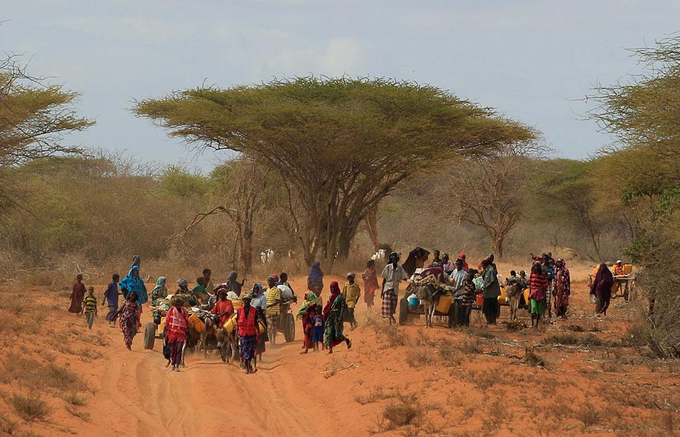 hungymamafrika35 Голод в Восточной Африке
