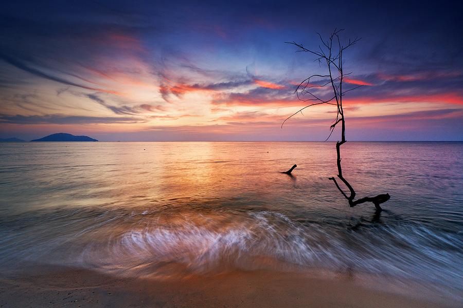 061 Bahasa Indonesia Menarik fotografer lanskap Bobby Bongo
