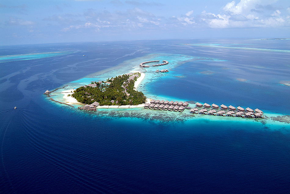 1101 Отель Coco Palm Bodu Hithi на Мальдивах