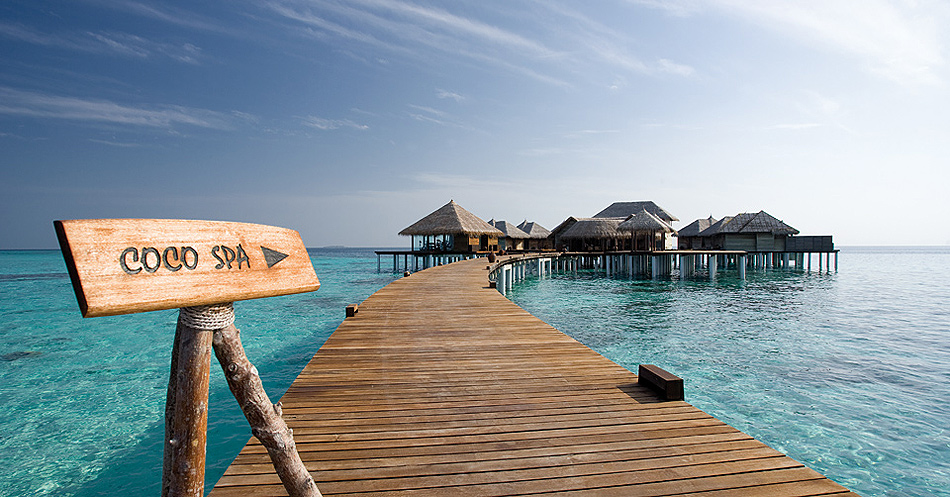 1315 Отель Coco Palm Bodu Hithi на Мальдивах