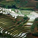 Северный Вьетнам: Сапа и окрестности