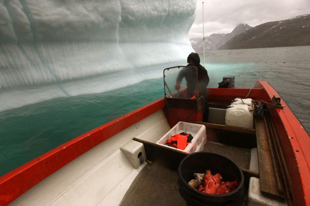 1979 990x659 Ледяная Гренландия...или уже не ледяная?