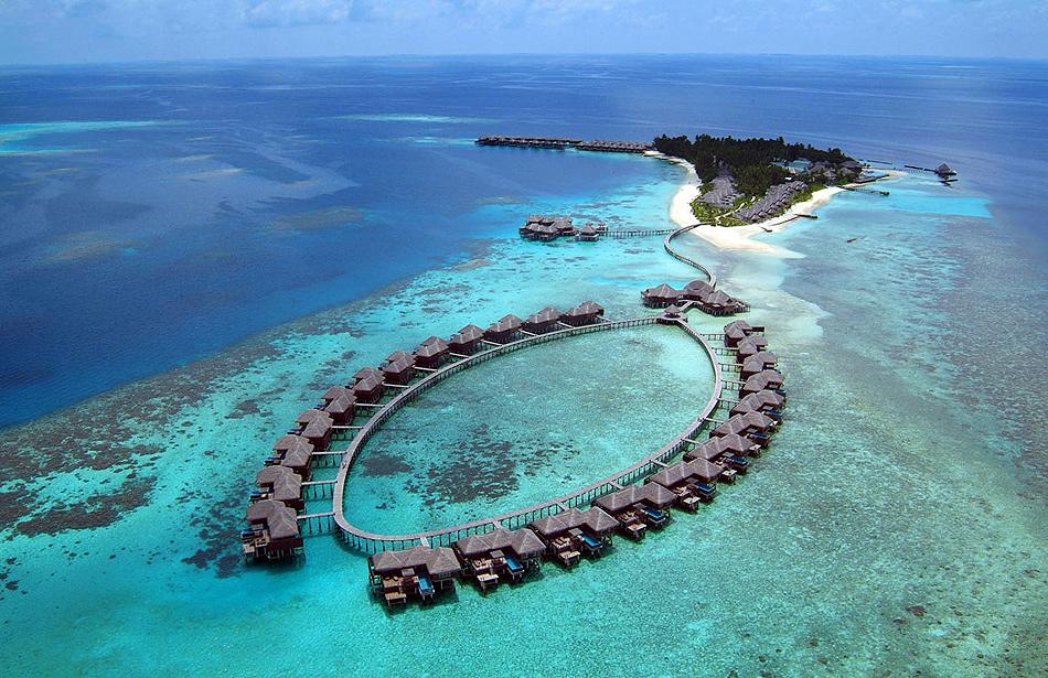 269 Отель Coco Palm Bodu Hithi на Мальдивах