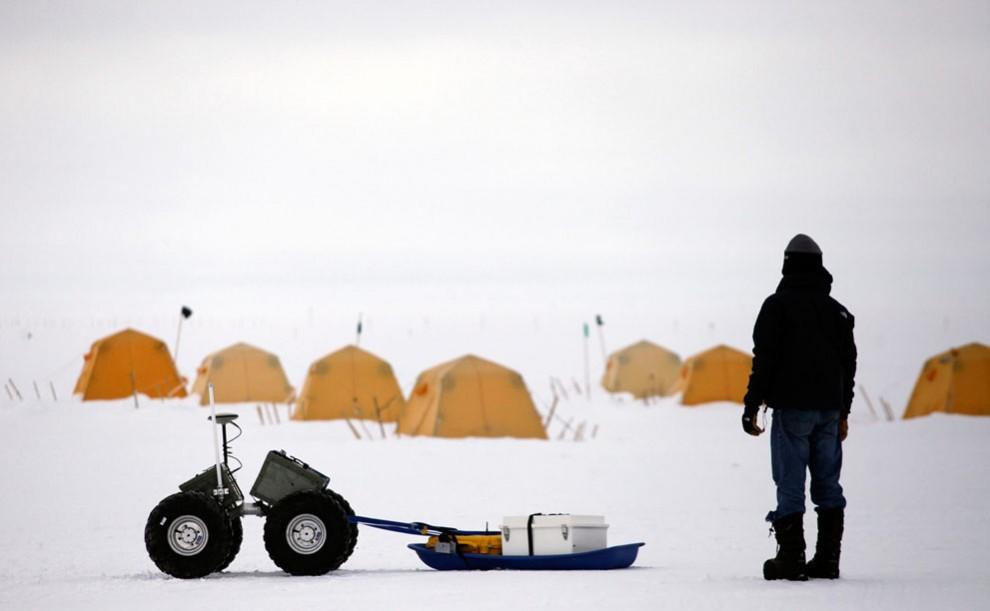 2855 990x611 Ледяная Гренландия...или уже не ледяная?