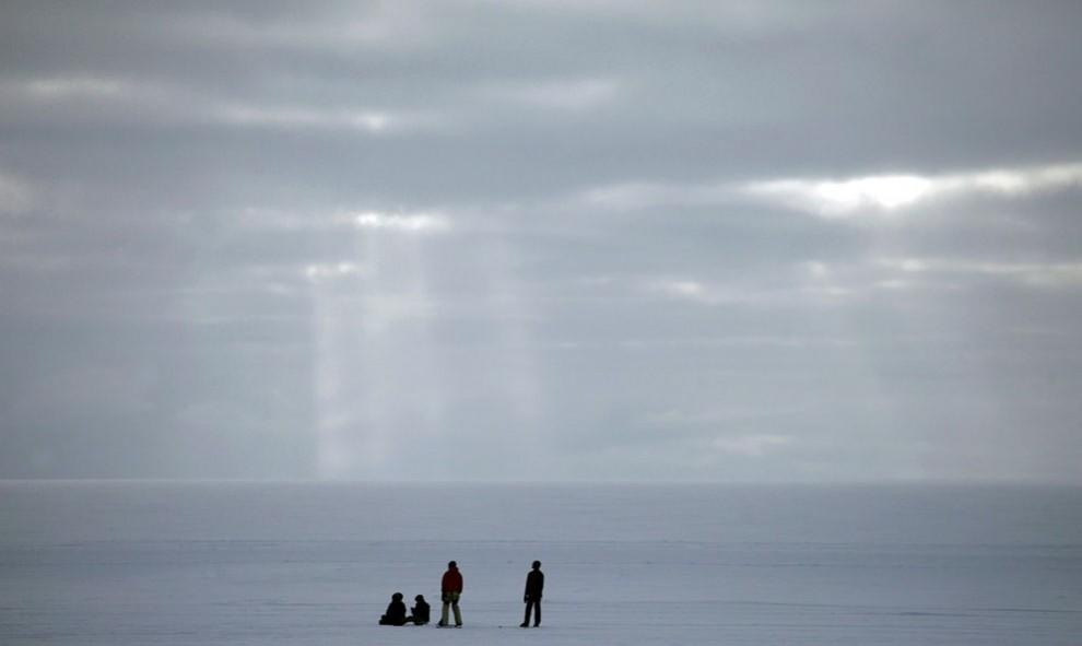 31102 990x591 Ледяная Гренландия...или уже не ледяная?
