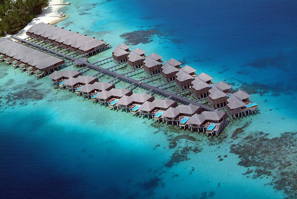 350 Отель Coco Palm Bodu Hithi на Мальдивах