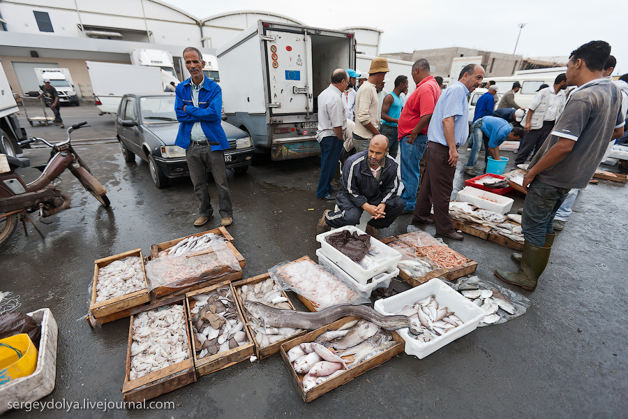 Марокко: Эссуэйра и рыбный рынок Агадира