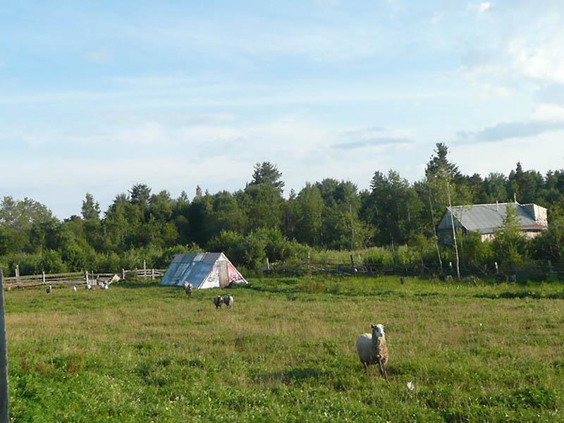Один день в летнем христианском лагере старообрядческой молодежи