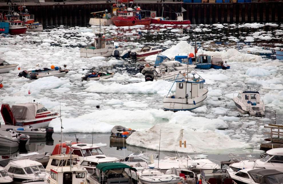6127 990x643 Ледяная Гренландия...или уже не ледяная?