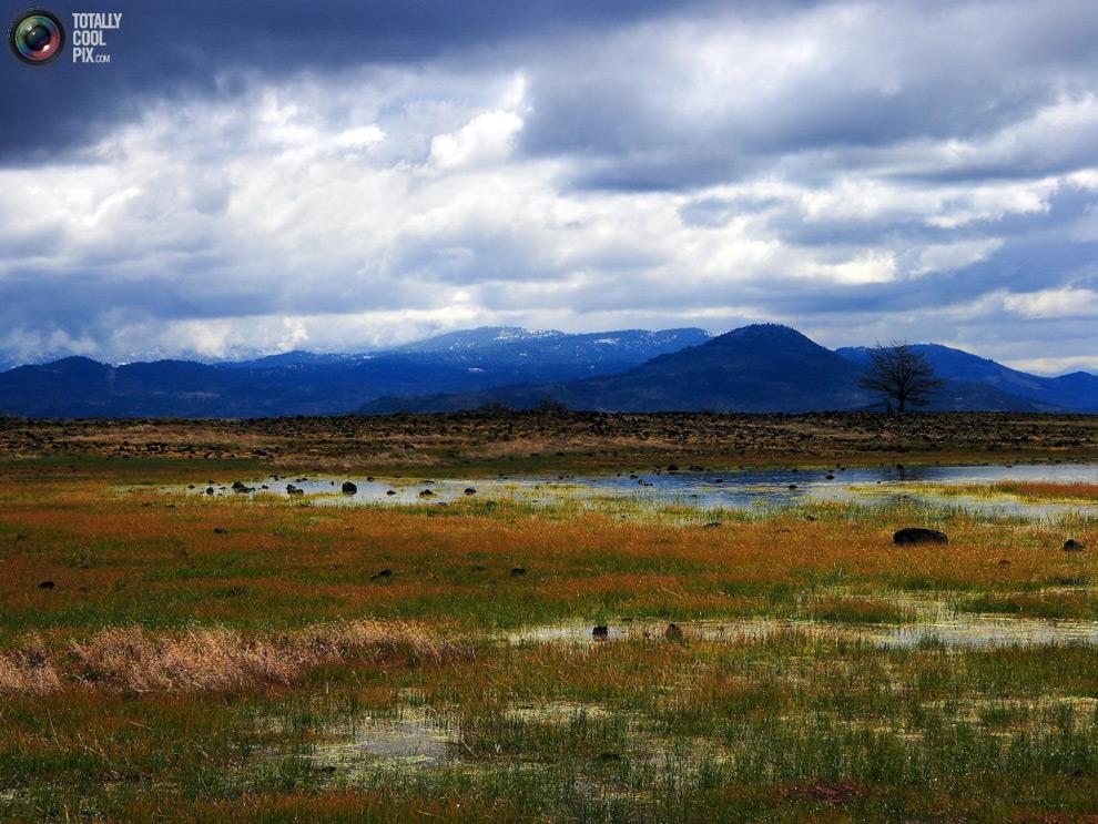 nature02 44 фото удивительной красоты природы