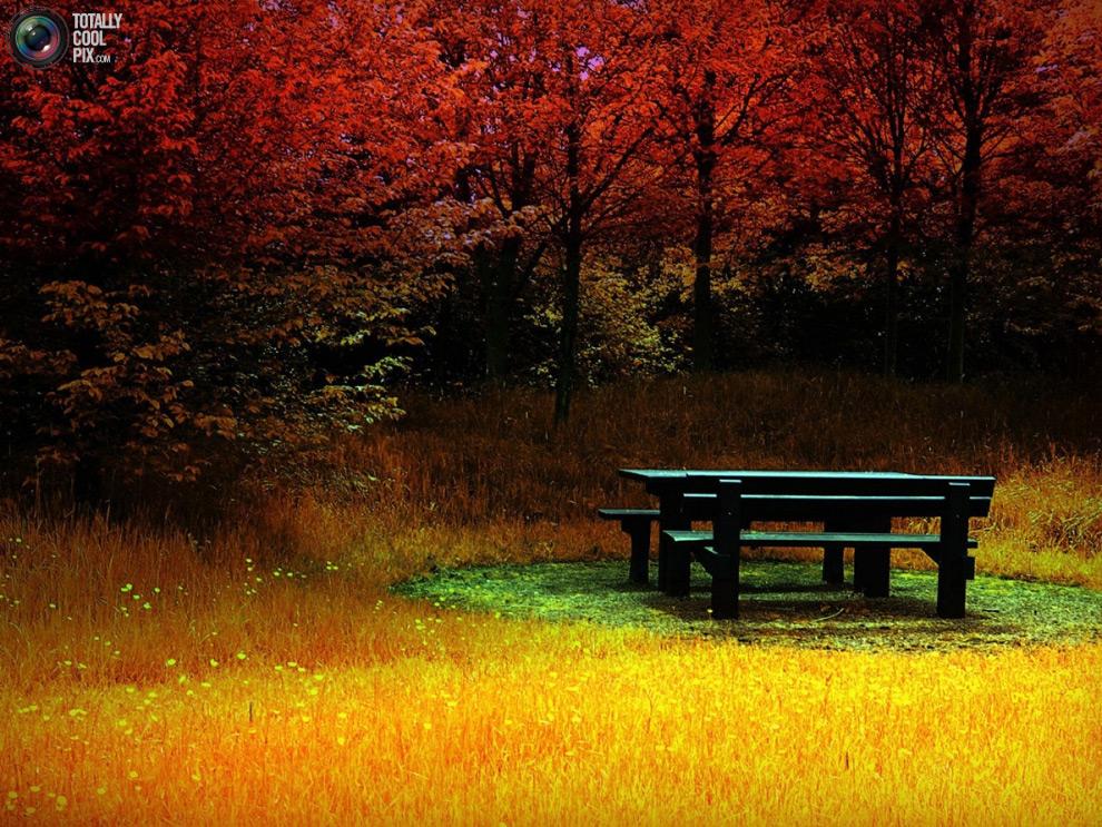 nature L 44 фото удивительной красоты природы