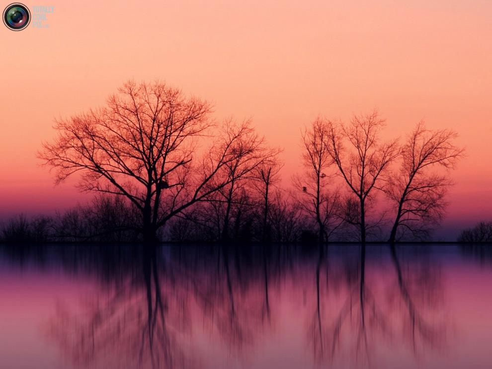nature R 44 фото удивительной красоты природы