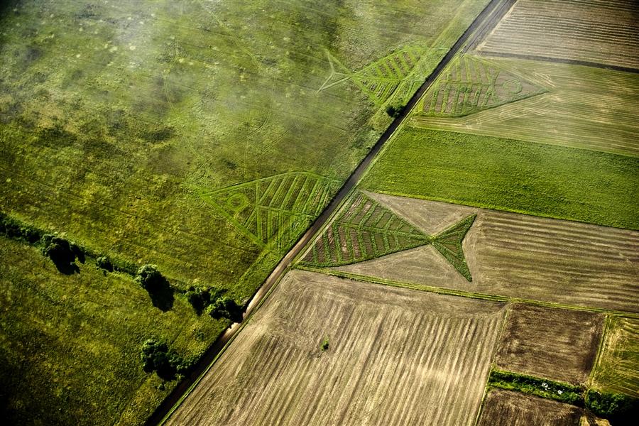 pb 110823 land art project eg 02.photoblog900 Гигантские рыбы на польско украинской границе