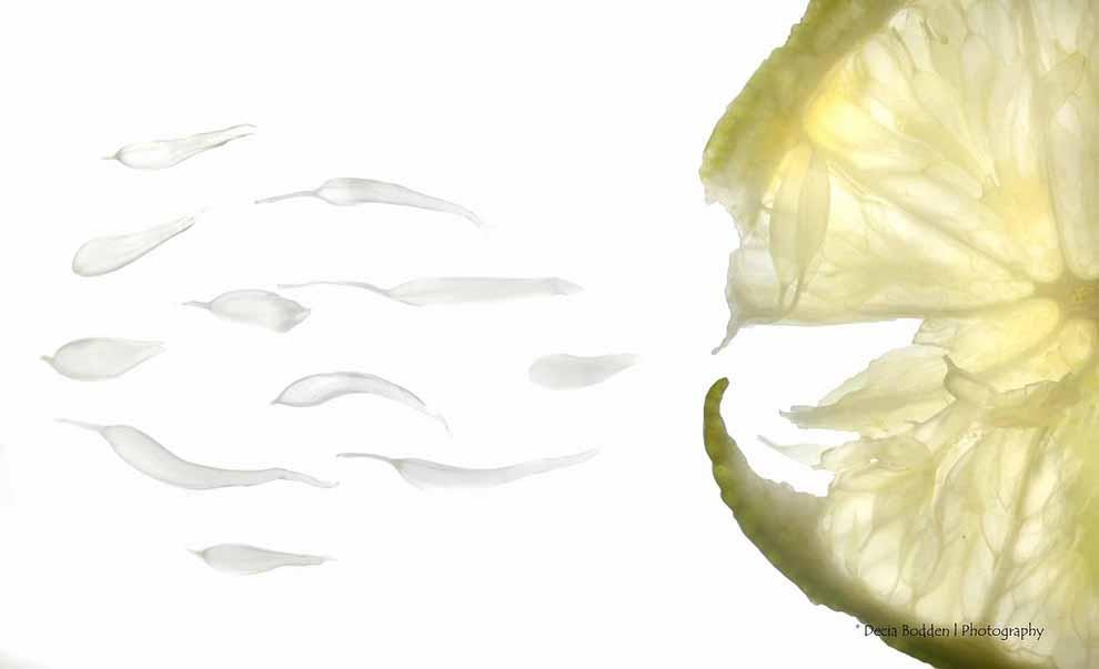 0318 10 фактов о сперме человека