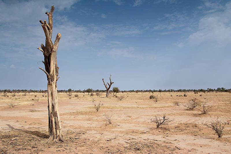 Mengatasi dampak dari pertambangan emas di Burkina Faso