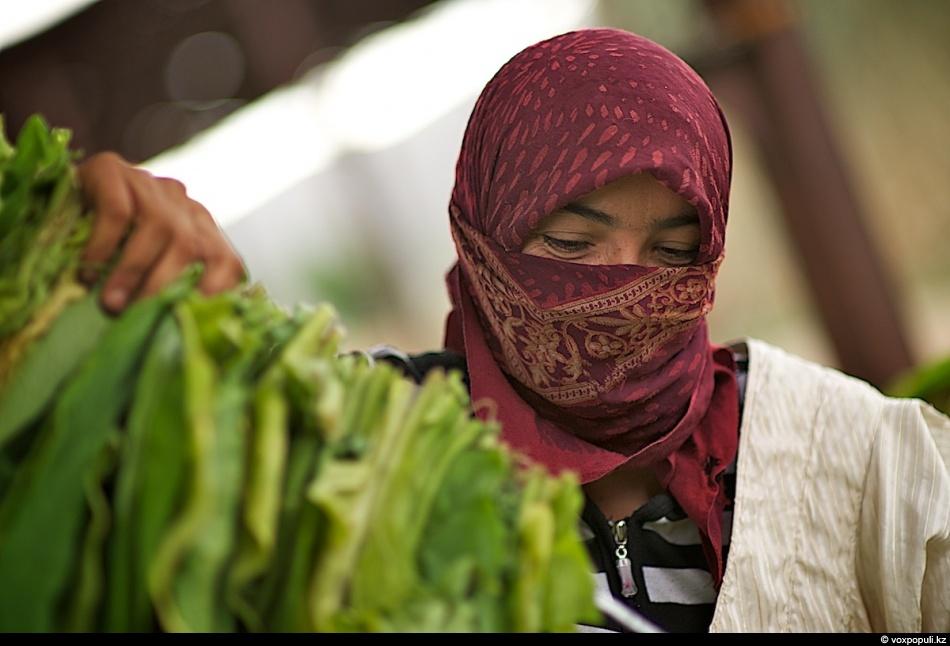 Как выращивают табак