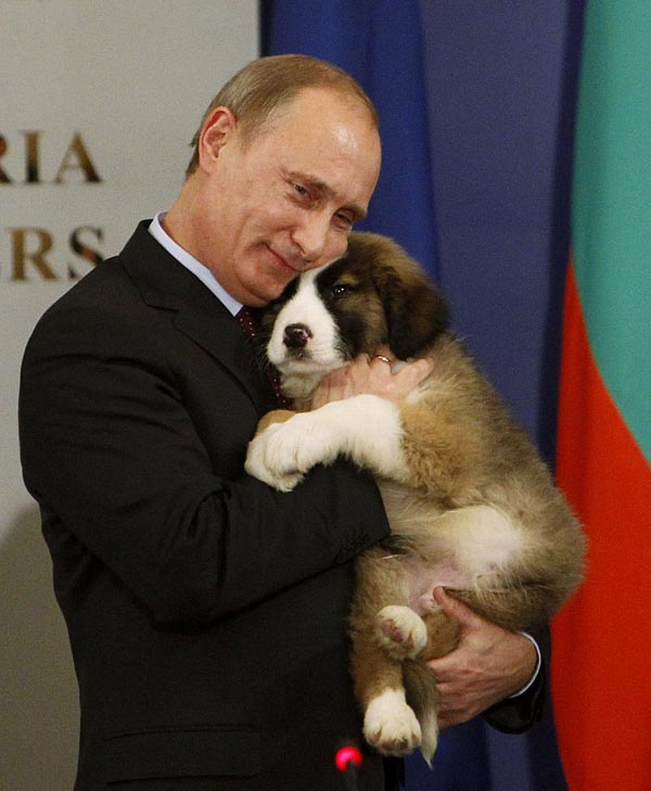 156606 russias prime minister putin hugs a bulgarian shepherd dog after recei Путин   любитель собак
