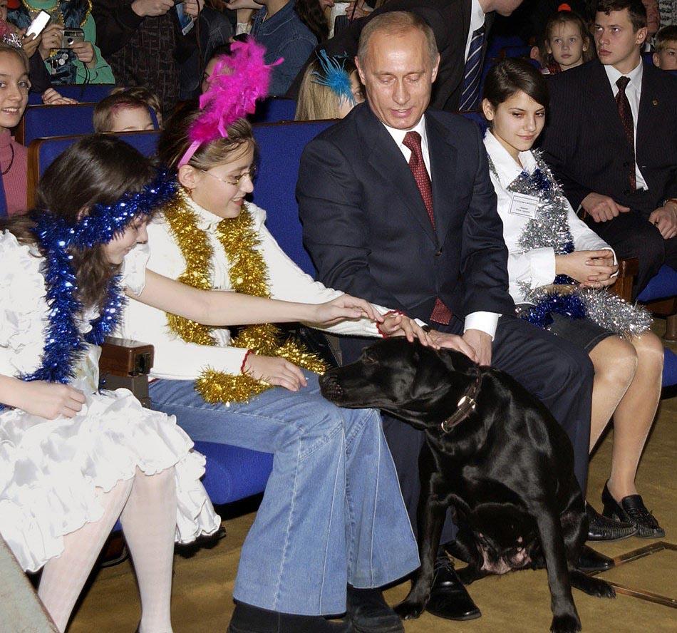 Девочки гладят собаку Путина Кони, во время новогоднего утренника в