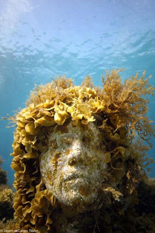 157448 t Подводные скульптуры превращаются в чудеса природы