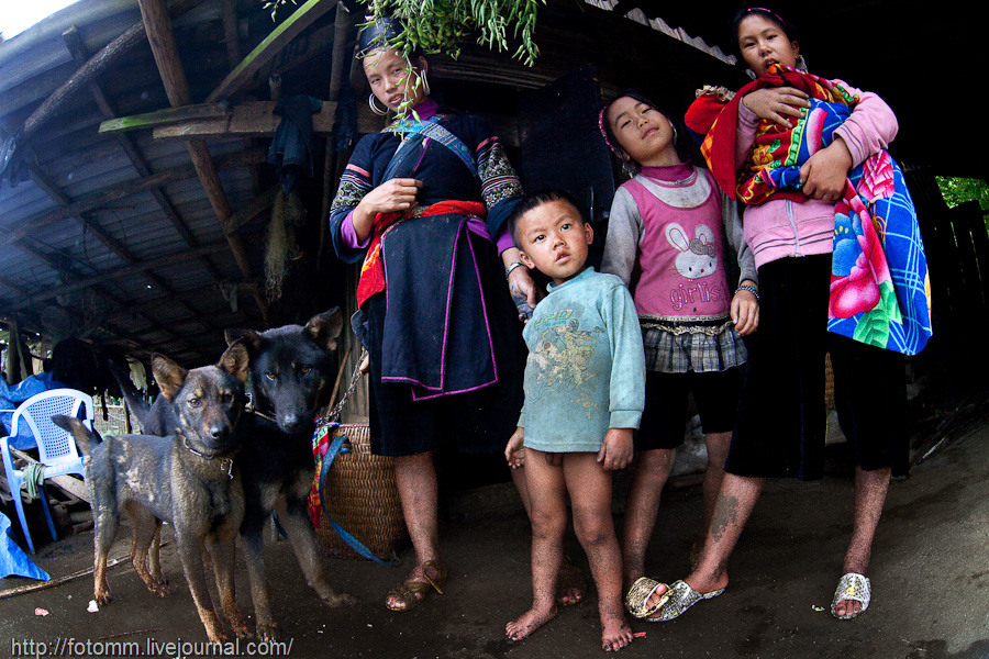 Северный Вьетнам. В крестьянском доме.