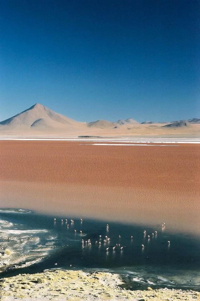 Menakjubkan pemandangan Laut Asin