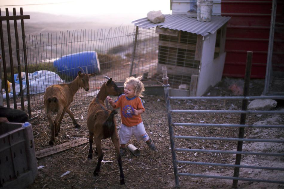 Kehidupan di Tepi Barat