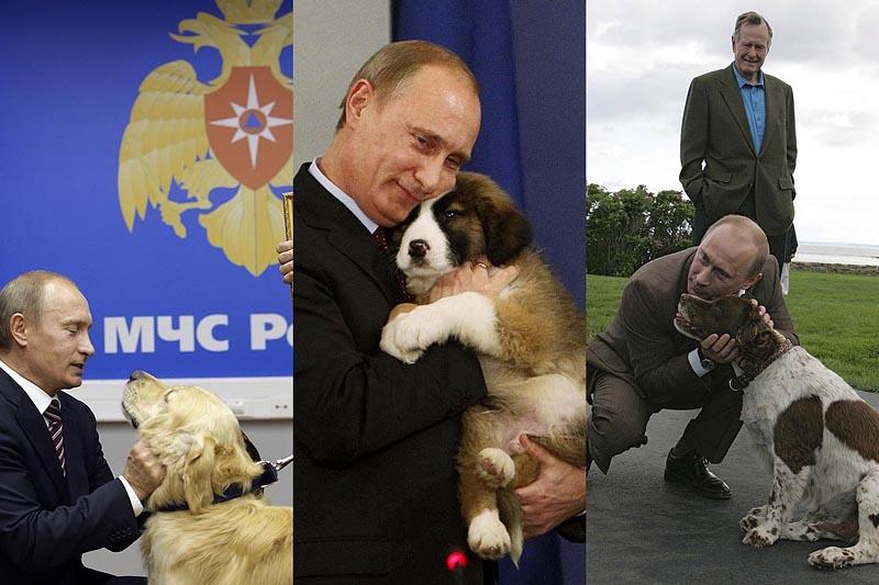 BIGPIC42 Путин   любитель собак