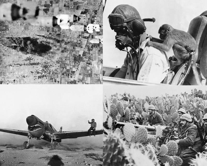 Вторая мировая война: Северо-Африканская кампания (Часть 12)