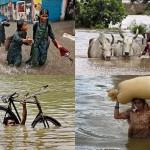 Последствия наводнений в Индии и Пакистане