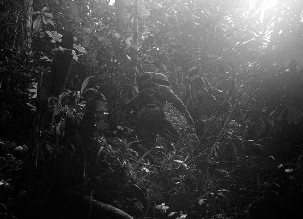 Американский разведывательный дозор пробирается сквозь густые джунгли в Новой Гвинее, 18 декабря 1942 года.