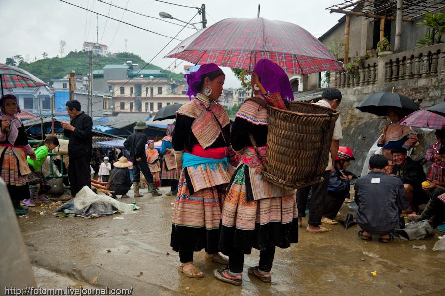 1050 pasar pertanian kolektif di Vietnam Pertambangan