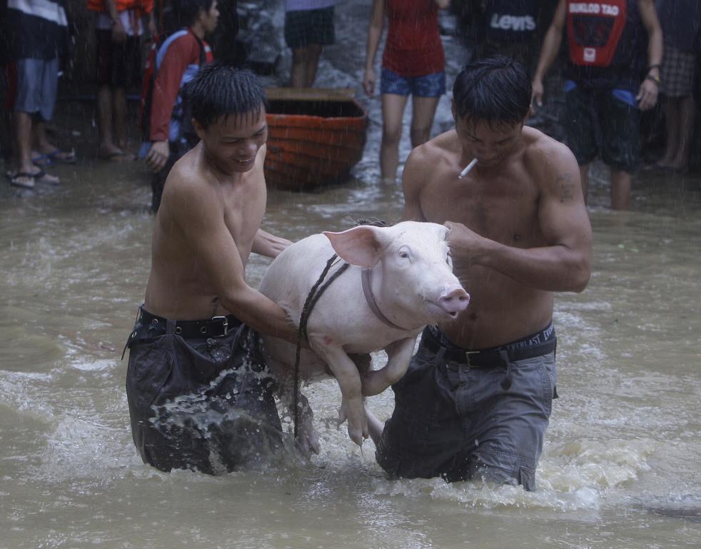 "114 Topan ""Nesat"" di Filipina"