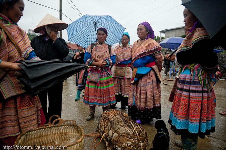 1244 pasar pertanian kolektif di Vietnam Pertambangan