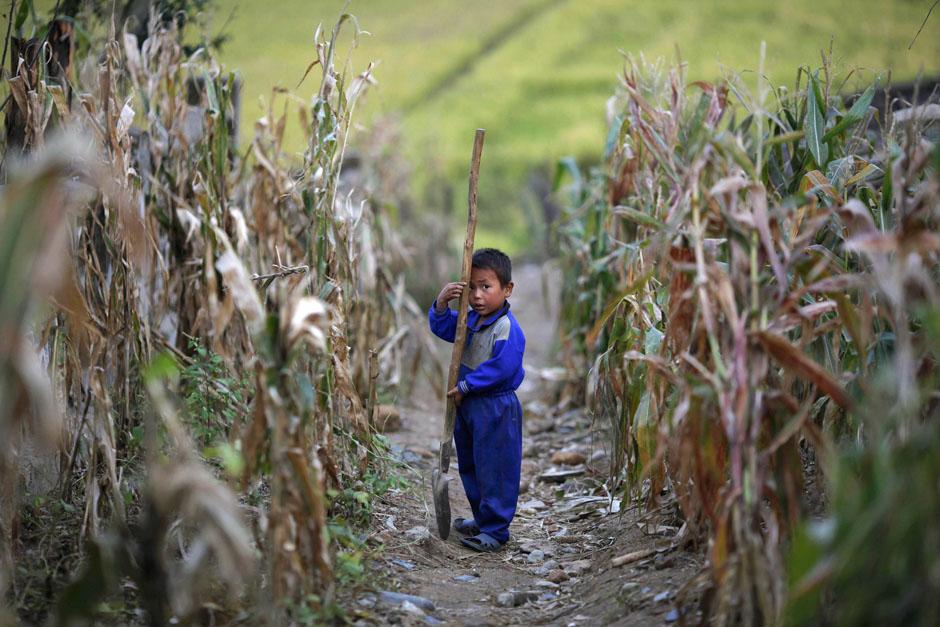 1331 Kelaparan di Korea Utara