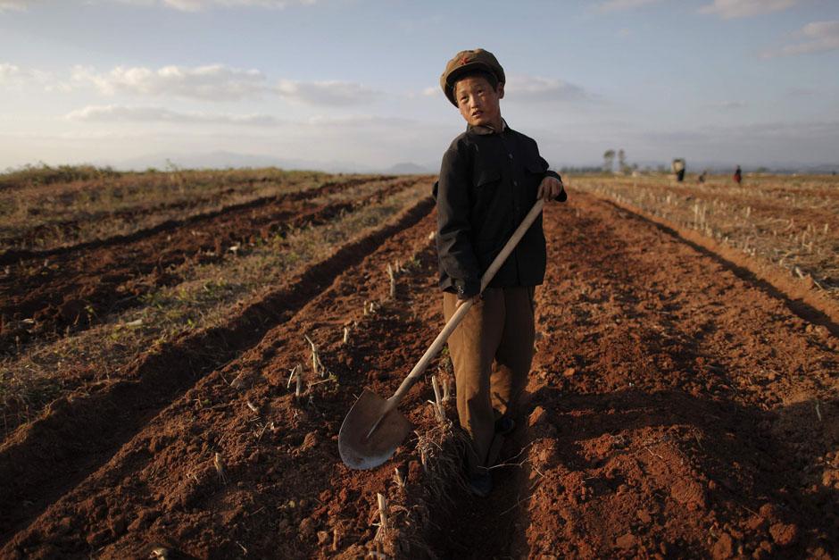 1530 Kelaparan di Korea Utara