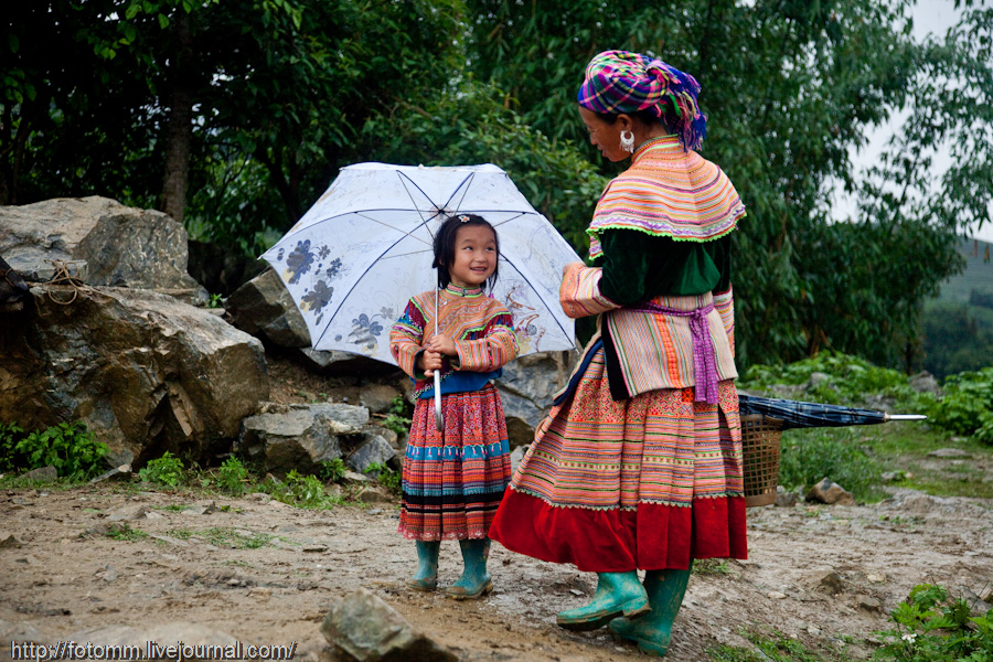 1541 pasar pertanian kolektif di Vietnam Pertambangan