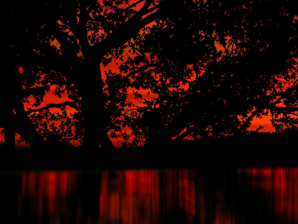 Sunsets 2169: Api di Langit